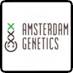 Amsterdam Genetics Cannabis Seeds