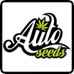 Auto Seeds Cannabis Seeds