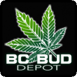 BC Bud Depot Cannabis Seeds