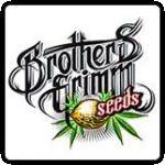 Brothers Grimm Seeds Cannabis Seeds