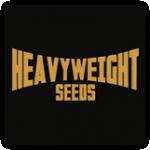 Heavyweight Seeds Cannabis Seeds