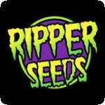 Ripper Seeds Cannabis Seeds