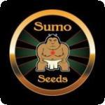 Sumo Seeds Cannabis Seeds