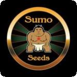 Sumo Seeds Cannabis Seeds