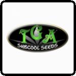 TGA Subcool Seeds Cannabis Seeds