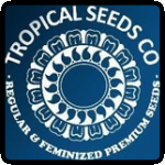 Tropical Seeds Cannabis Seeds