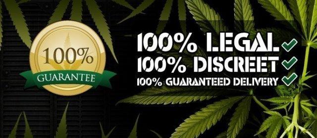 100% Legal, 100% Discreet
