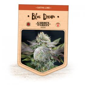 Blue Dream Feminised Seeds