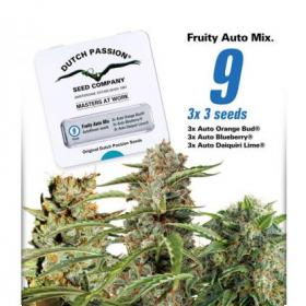 Fruity Mix Auto Feminised Seeds