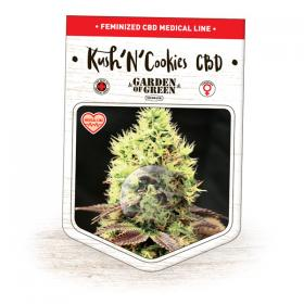 Kush 'N' Cookies CBD Feminised Seeds