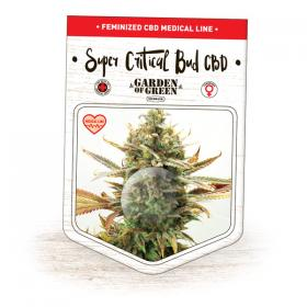 Critical Relief CBD Feminised Seeds