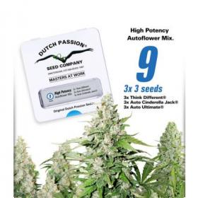 High Potency Autoflowering Mix Feminised Seeds