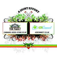 The Vault One Love Joint 420 Connect Tshirt