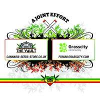 The Vault One Love Joint Grasscity Tshirt