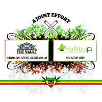 The Vault One Love Joint Rollitup Tshirt