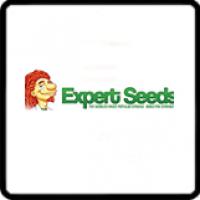 Expert Seeds