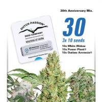 30th Anniversary Mix Feminised Seeds