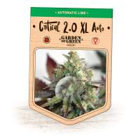 Critical 2.0 XL Auto Feminised Seeds