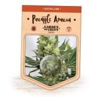 Pineapple Amnesia Feminised Seeds