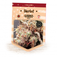 Sherbet Feminised Seeds