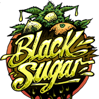 Black Sugar Feminised Seeds