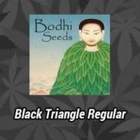 Black Triangle Regular Seeds
