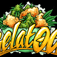 Gelat.OG Feminised Seeds