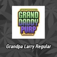 Grandpa Larry Regular Seeds
