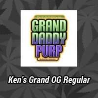 Kens Grand OG Regular Seeds