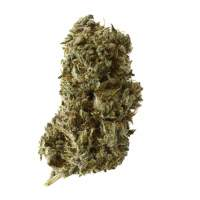 Kosher Tangie Kush Feminised Seeds