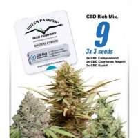 Rich Mixed CBD Feminised Seeds