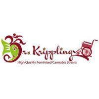 Dr  Krippling 250x250